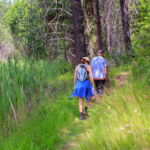 Hikes Scheduled with AARP & the Center for Healthy Aging